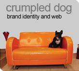 crumpled dog